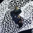 'Danza a Escena' se despide del Centre D'Arts Esceniques D'Osona de Vic con ''LÙ'