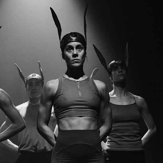 'Danza a Escena' lleva 'No pleasure' al Paranimf de la Universitat Jaume I de Castellón